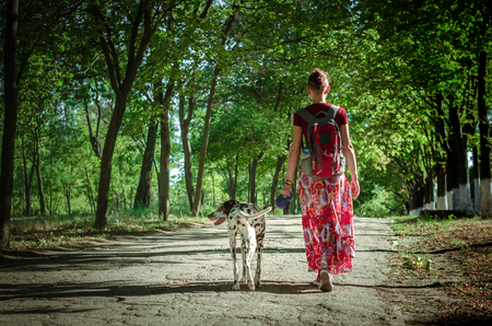 walk with a pet a young woman in a colorful skirt and a burgundy T-shirt is led on a leash bright Dalmatian dog summer day in park. Stockfoto