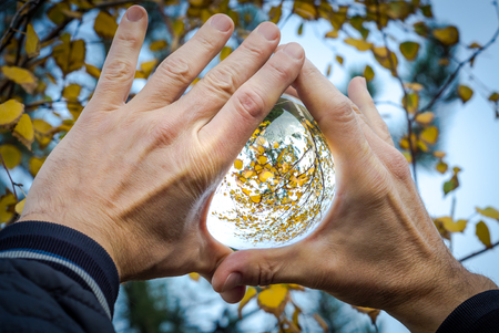 glass ball with the reflection of yellow leaves and tree branches in male hands