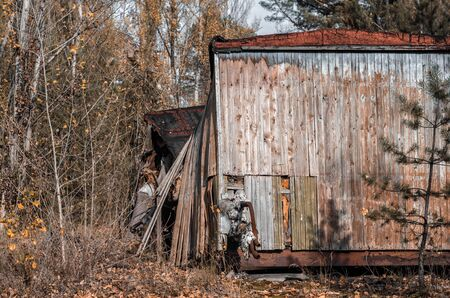 ruins wooden house with trees and bushes Chernobyl Ukraine in autumn Stok Fotoğraf