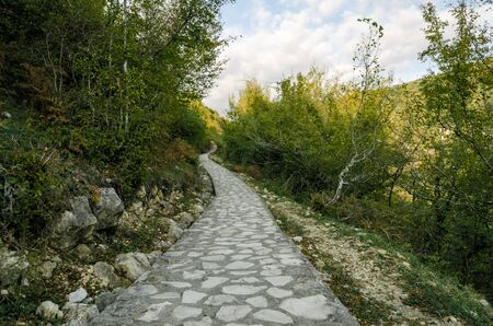 stone footpath in a forest with green trees and blue sky in Georgia in autumn