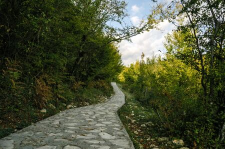 stone footpath in a park with green trees and blue sky in Georgia in autumn