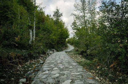 stone walking path with green trees and blue sky in Georgia in autumn