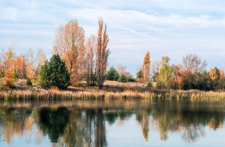 river bank with trees and reflection in the water in Chernobyl. Ukraine in the autumn afternoon Stok Fotoğraf