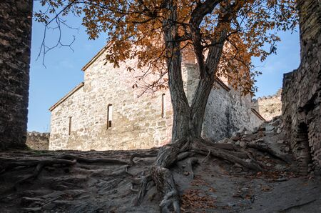 big old stone house and tree with roots in Tbilisi Georgia in autumn Stok Fotoğraf