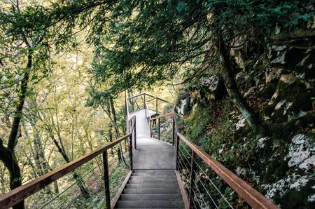 old metal stairs in a forest with green trees in a canyon in Georgia in autumn Reklamní fotografie