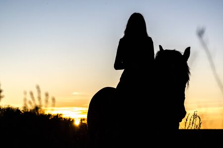 black silhouette of a long-haired horsewoman on sunset background