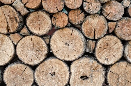 many wooden logs trunks natural nature background pattern texture
