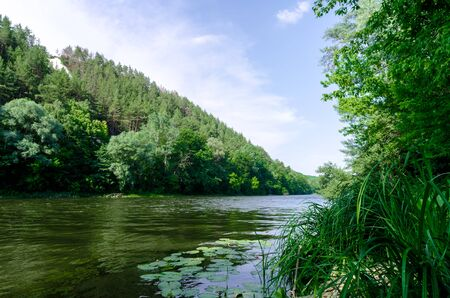 river and green forest on a mountain without people landscape Ukraine Stok Fotoğraf - 150265411
