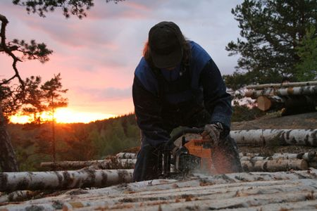 lumberman: a working lumber-man in a forest