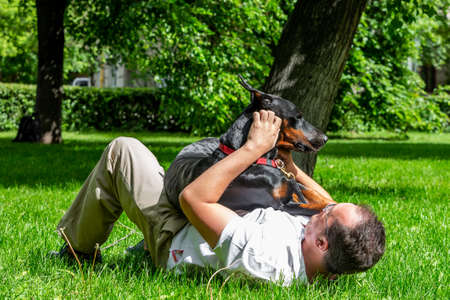 Man plays in the park with Dobermann Stock Photo