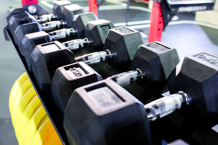 Dumbbells, pancakes and weights lying on the shelves. Gym. Equipment for gym 스톡 콘텐츠