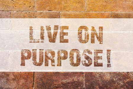 Text sign showing Live On Purpose. Conceptual photo Have a goal mission motivation to keep going inspiration Brick Wall art like Graffiti motivational call written on the wall
