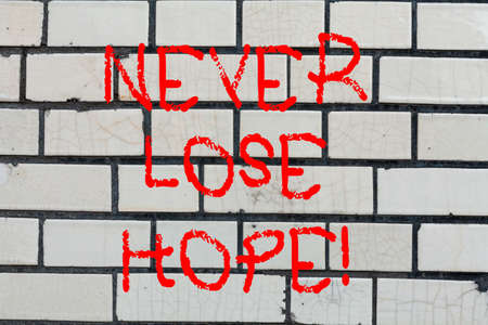Conceptual hand writing showing Never Lose Hope. Business photo text Be positive optimistic have motivation to keep going Brick Wall art like Graffiti motivational call written on the wall