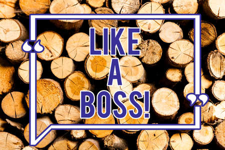Text sign showing Like A Boss. Conceptual photo Acting as if you are the one giving orders in job or situation Wooden background vintage wood wild message ideas intentions thoughts Stock Photo