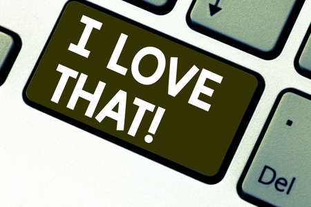 Text sign showing I Love That. Conceptual photo Having affection for something or someone Roanalysistic feelings Keyboard key Intention to create computer message pressing keypad idea Stockfoto
