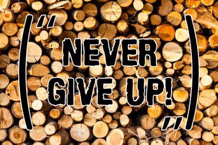 Word writing text Never Give Up. Business concept for Keep trying until you succeed follow your dreams goals Wooden background vintage wood wild message ideas intentions thoughts Stockfoto