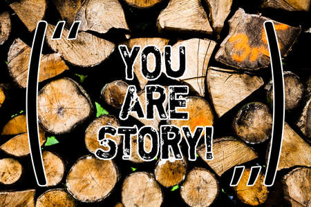 Word writing text You Are Story. Business concept for Your stories count and are important worth to tell everybody Wooden background vintage wood wild message ideas intentions thoughts Reklamní fotografie