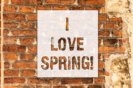 Conceptual hand writing showing I Love Spring. Business photo text Affection for season of year where there are lot of flowers Brick Wall art like Graffiti motivational call written on the wall