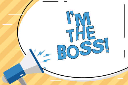 Word writing text I M The Boss. Business concept for Be the one that gives orders on a job or particular situation