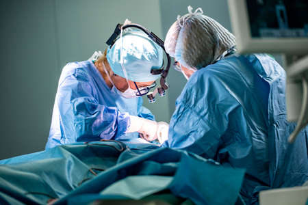 Surgeon and his assistant performing cosmetic surgery in hospital operating room. Surgeon in mask wearing loupes during medical procadure.
