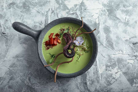 Top view asparagus soup with octopus in a gray bowl on a concrete marble gray background. Copy space, food photo advertising, soft light.