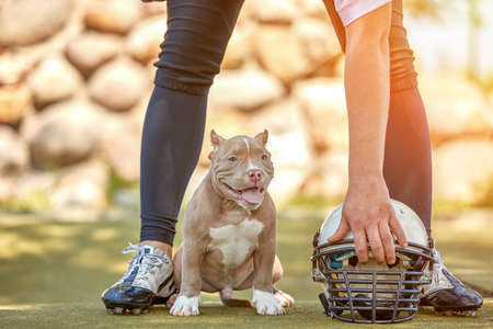 American football player with a dog posing on camera in a park. Copy space, sports banner. Concept american football, sport for the protection of animals. Stock Photo