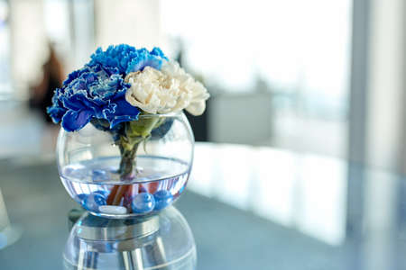 Blue and white orchids in a vase on the table, a beautiful arrangement of flowers in the office. 写真素材