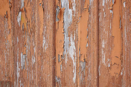 old wooden fence. Faded wooden planks with corrosion. Peeled wooden door of several boards. Old natural wooden board without paint.