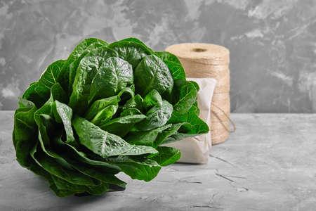 lettuce or romano salad, salad leaves lettuce bush, green crop petals, vitamins Roman salad, Batavia menu concept. food background. side view. copy space