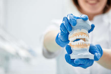 A dentist girl holds a model of a jaw in her hand