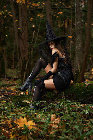 Young woman in black dress with witch hat and orange pumpkin placed around in the forest, Halloween concept. Horror theme. 免版税图像