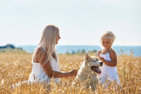 Cute baby girl with mom and dog on wheat field. Happy young family enjoy time together at the nature. Mom, little baby girl and dog husky resting outdoors. togetherness, love, happiness concept. Standard-Bild