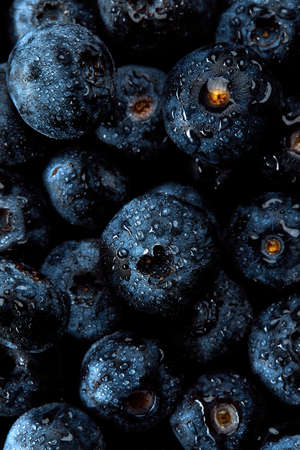 Fresh natural antioxidant blueberries pile, macro detailed close up
