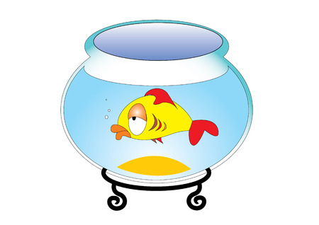 goldfish jump: Fish in aquarium