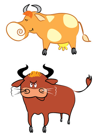 fun grass: Cow and bull