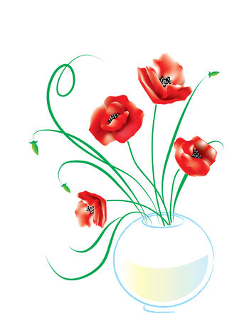 Poppy in vase on white Vector