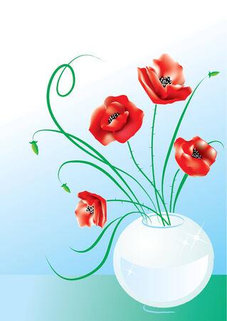 Poppy in vase on blue Vector