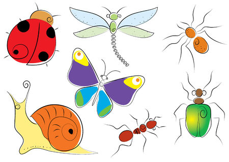 Vector insects Stock Vector - 5470632
