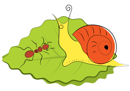 Vector snail and ant on green leaf Vector