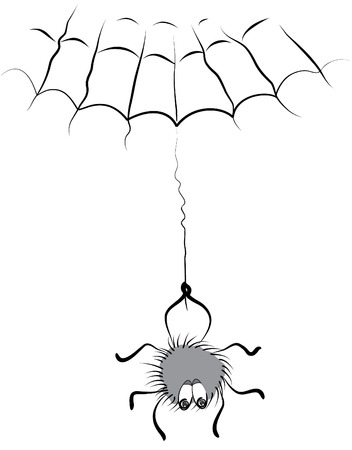little spider and web on white Stock Vector - 6558070