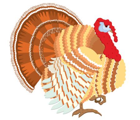 Color turkey.  Thanksgiving day bird for design Vector
