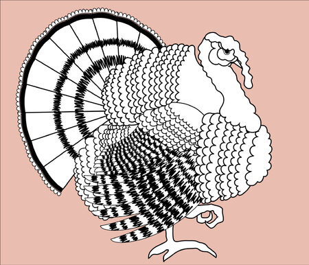 one animal: Turkey.  Thanksgiving day bird for design