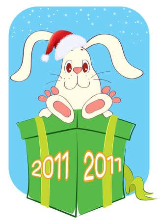 Rabbit and christmas box.new year symbol Vector