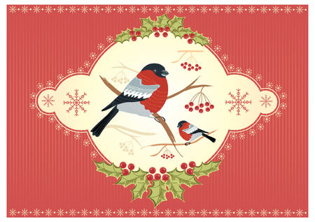 vintage winter card with bullfinches  for holiday Stock Vector - 8356467