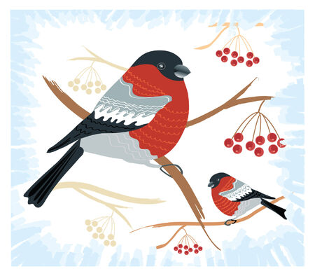 bullfinches on branches in winter .New year card Stock Vector - 8356465