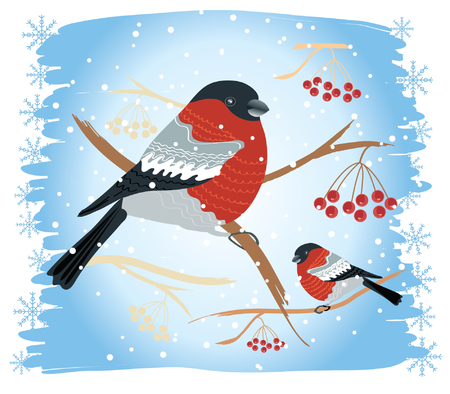 bullfinches on branches in winter .New year card Stock Vector - 8356464