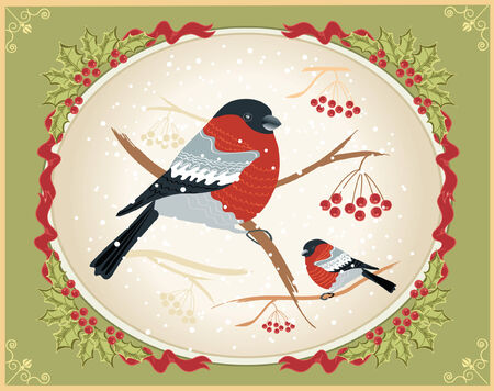 Vector vintage winter card with bullfinches for holiday  Vector