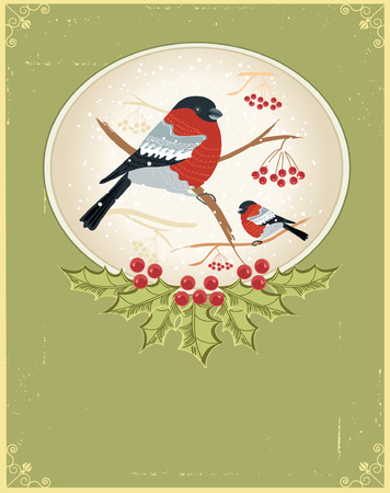 Vector vintage winter card with bullfinches for holiday Stock Vector - 8452256