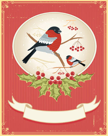 Vector vintage winter card with bullfinches for holiday Stock Vector - 8452257