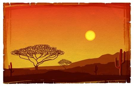 acacia: African sunset illustration on old paper texture.Savanna background Stock Photo